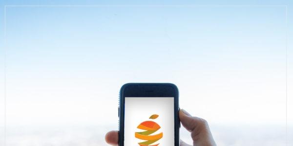 Zest logo design on mobile phone