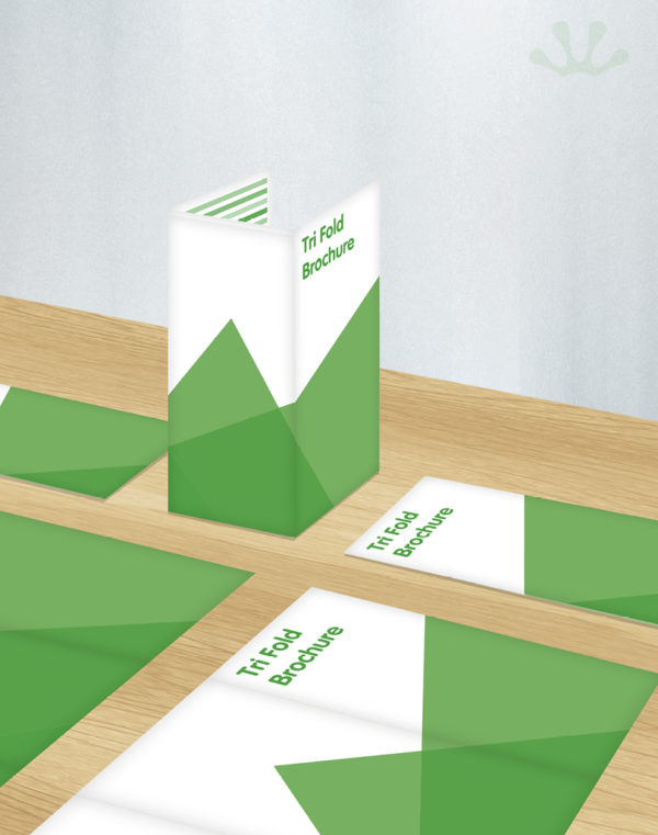 Green and white graphic image of tri-fold brochure