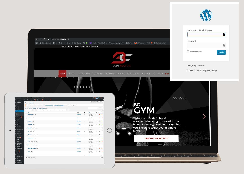 banner showing WordPress CMS