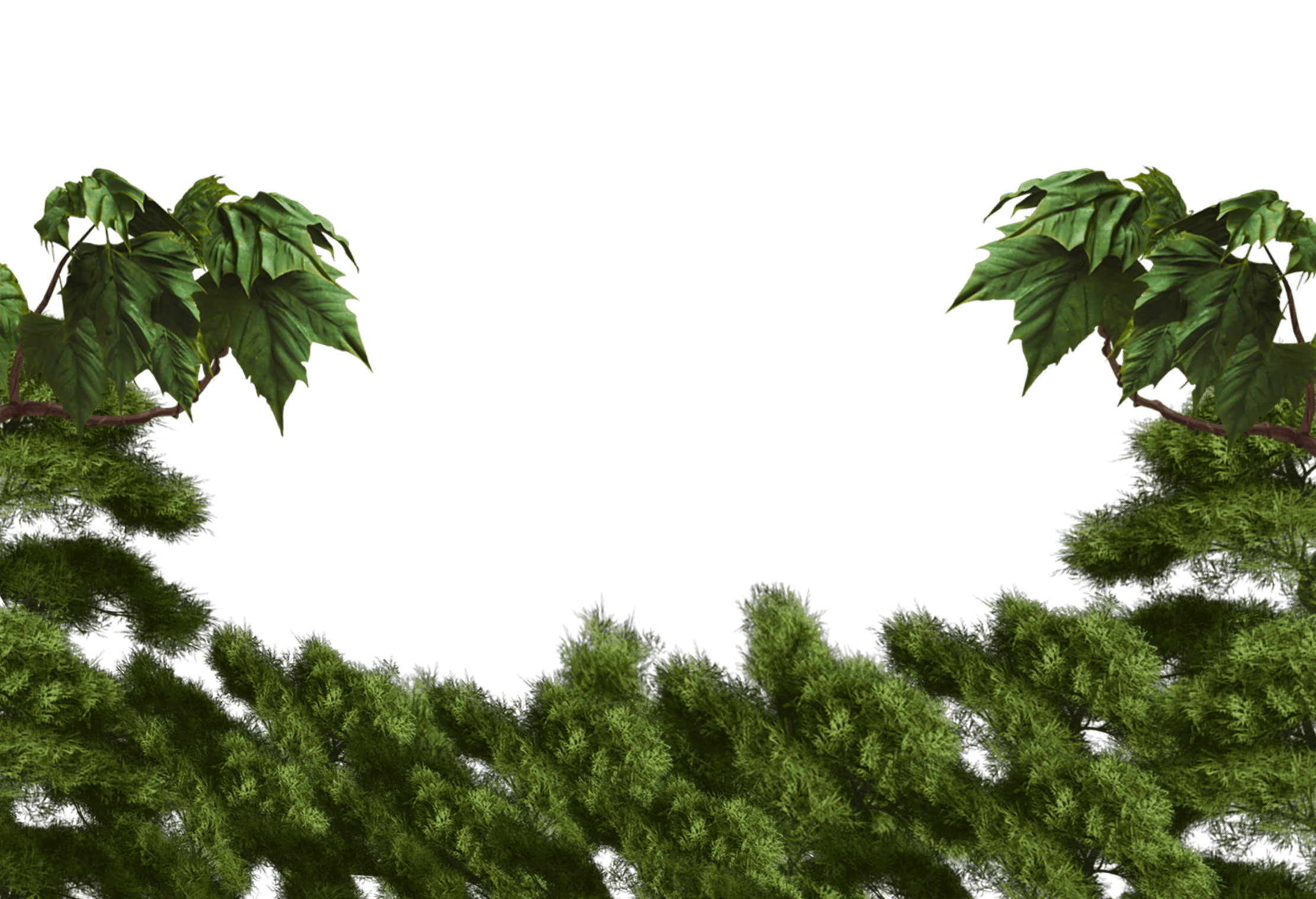 leaves and foliage graphics