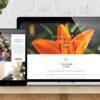Gilded Lily Florist Website Build main image