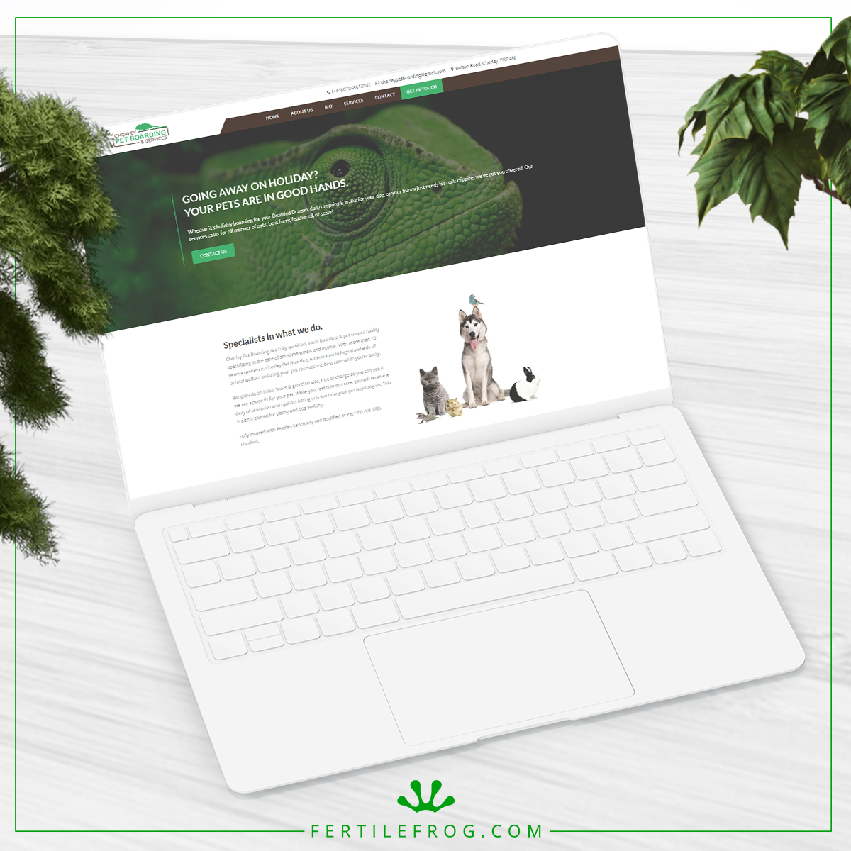 Pet Boarding and Services Website Build laptop