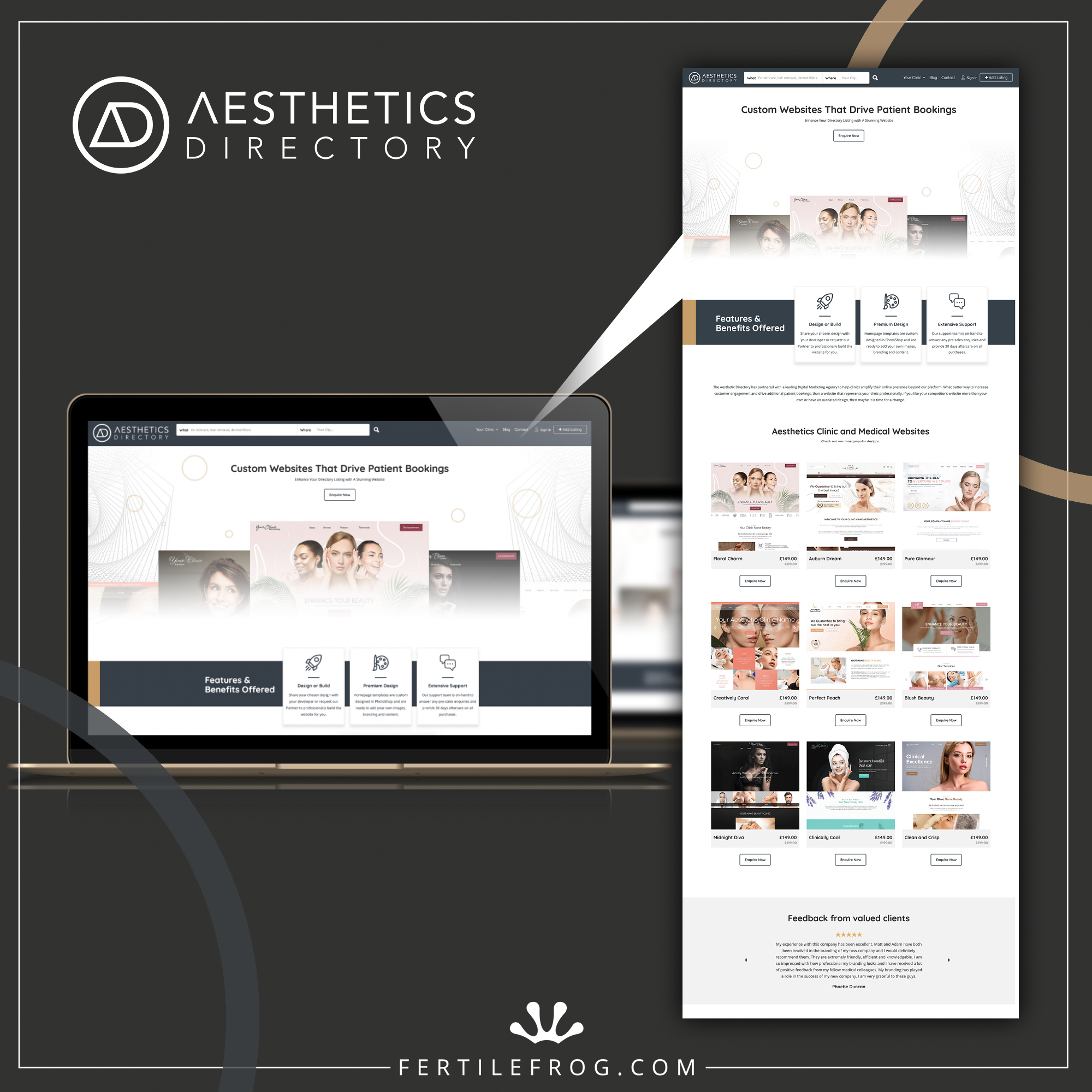 Graphic showing a screenshot of the Aesthetics Directory website store page