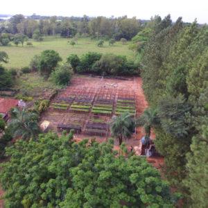Nursery drone footage
