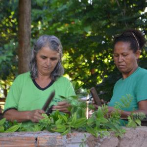 Women working in nursery