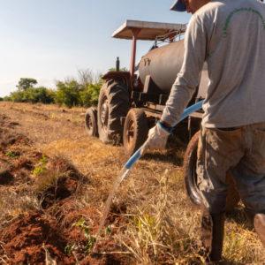 Farmer watering plants