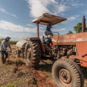 Tractor helping planting